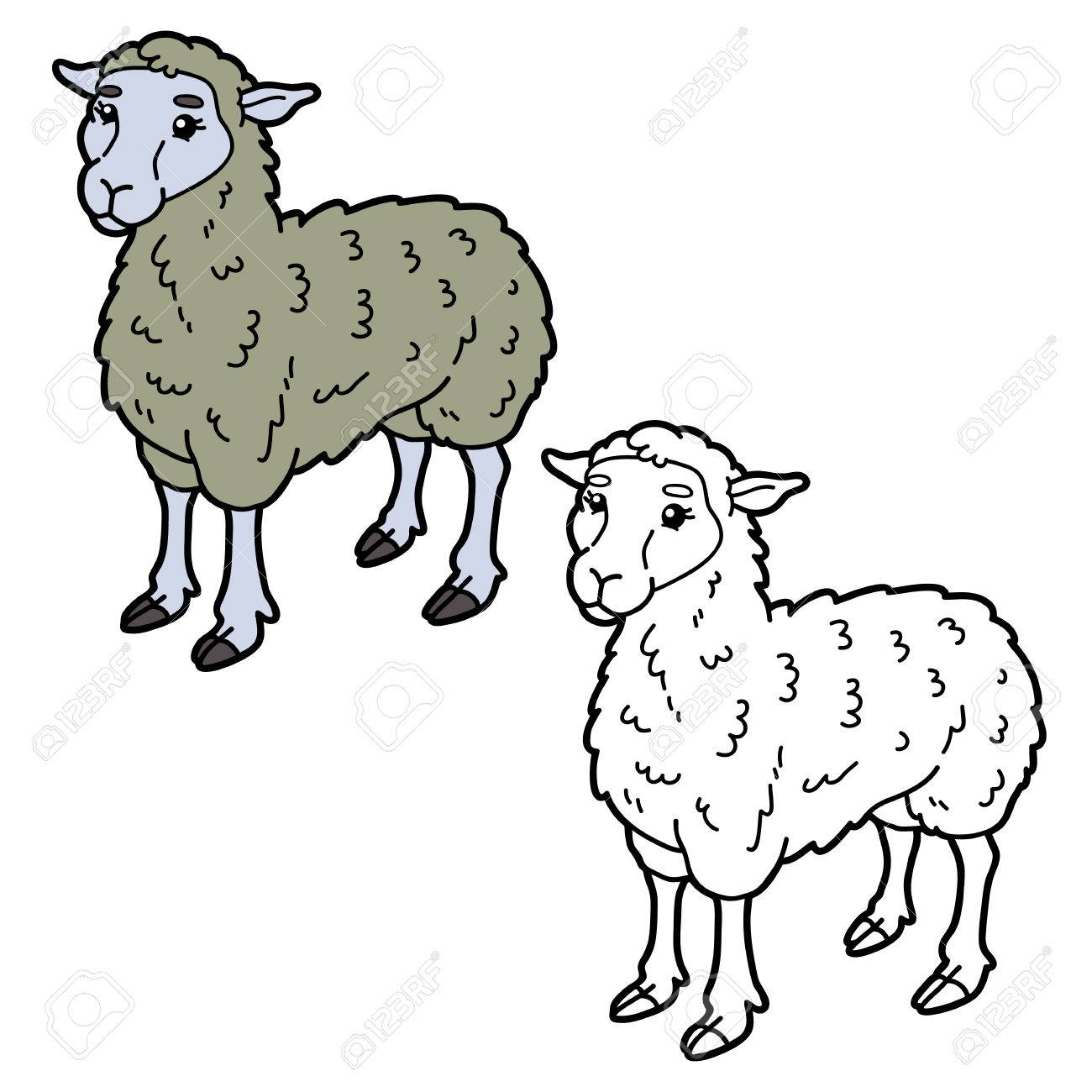 Vector Illustration Coloring Page Of Happy Cartoon Sheep For ...