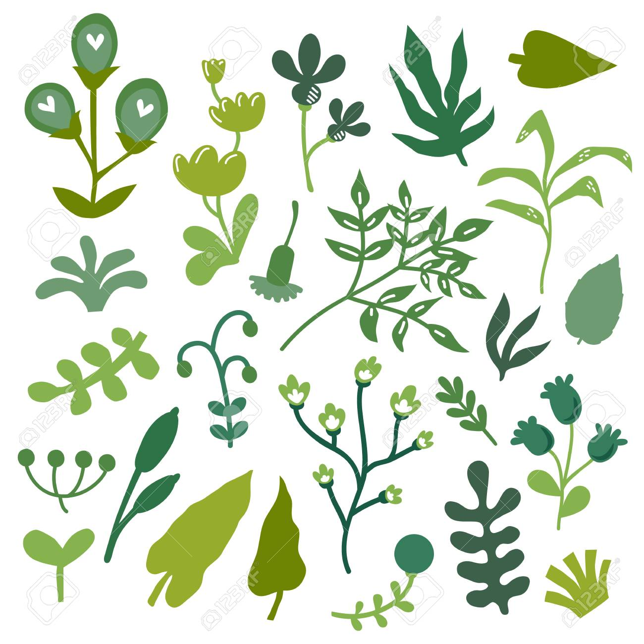 Vector Illustration Set Of Hand Drawn Unique Plants And Leaves Royalty Free Cliparts Vectors And Stock Illustration Image 101148907
