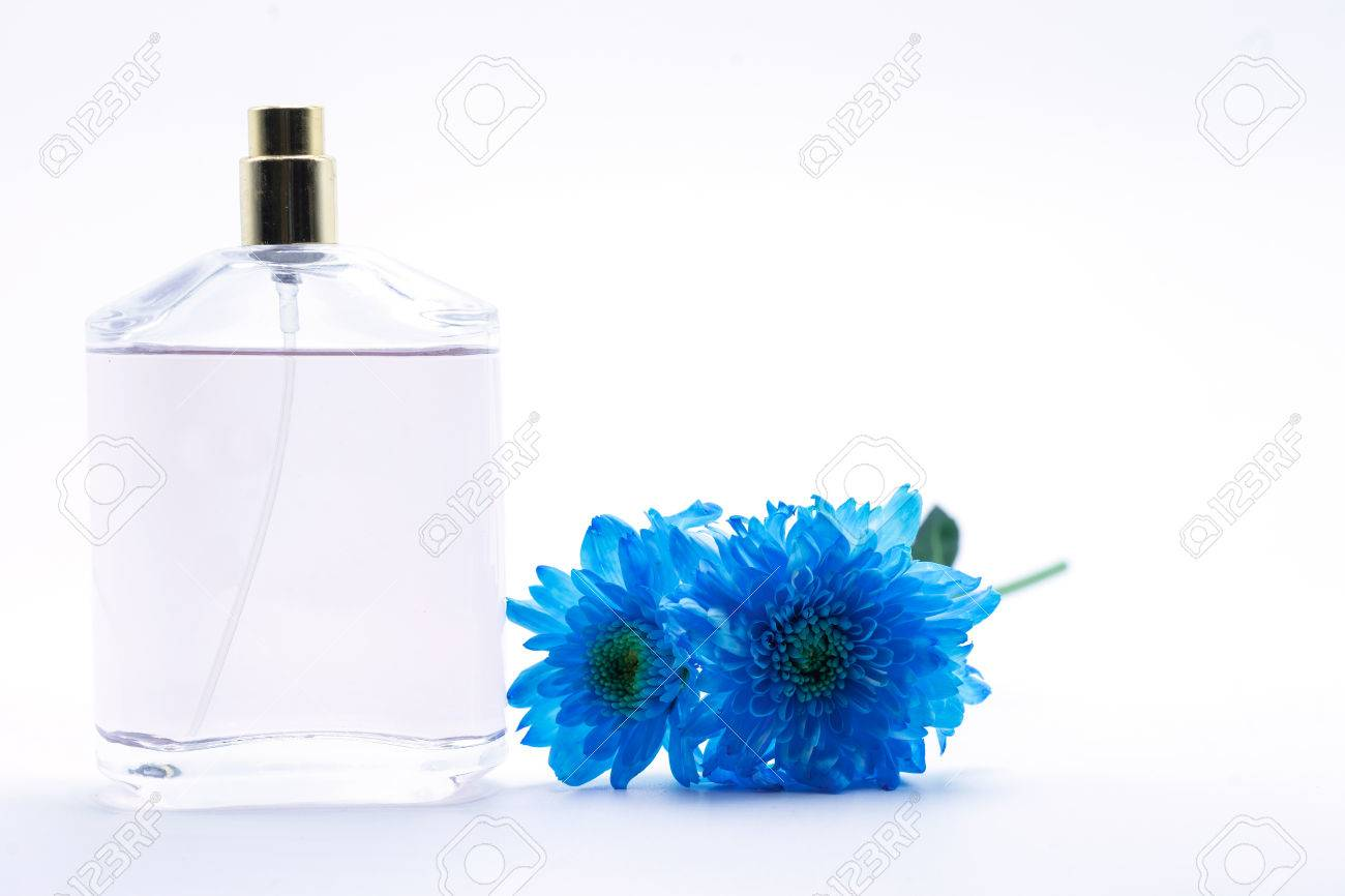 Blue daisy flower navy blue daisy flower and perfume on white blue daisy flower navy blue daisy flower and perfume on white isolate background text word on izmirmasajfo