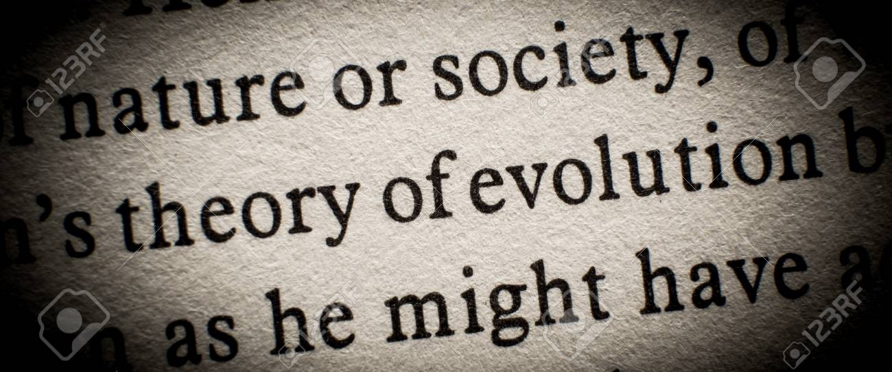 Theory of evolution Stock Photo - 16726538
