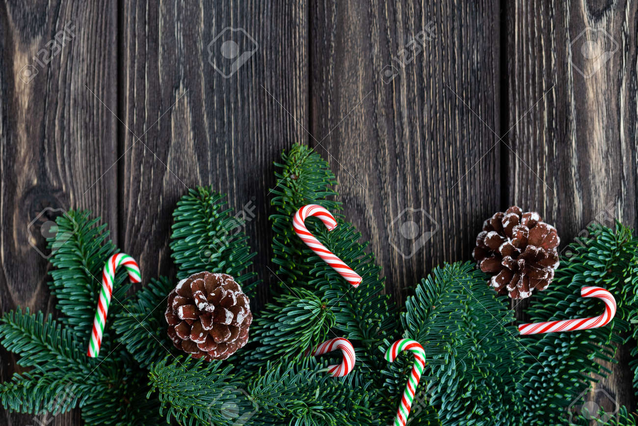 Christmas Tree Branches With Cones Frozen Berries And Tiny Candy Stock Photo Picture And Royalty Free Image Image 119285951