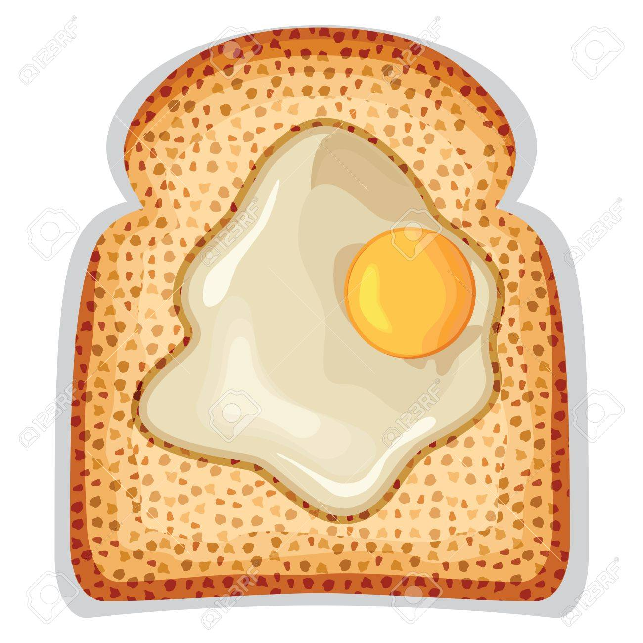 A fried egg sunny side up of crusty toast Stock Vector - 18579664