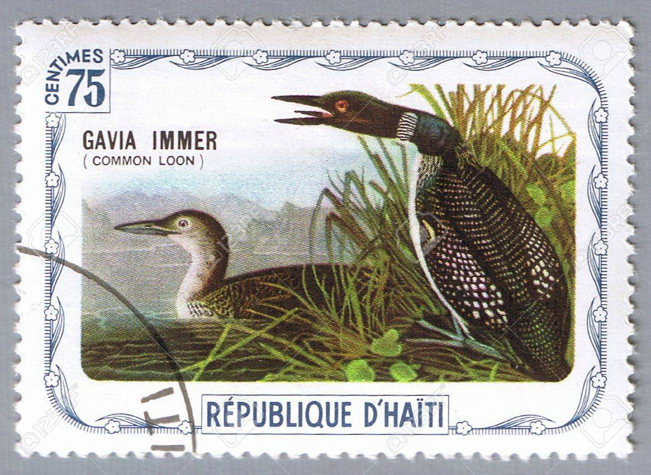 HAITI � CIRCA 1975: A stamp printed in Haiti shows Common loon, series devoted to the birds, circa 1975 Stock Photo - 7883854