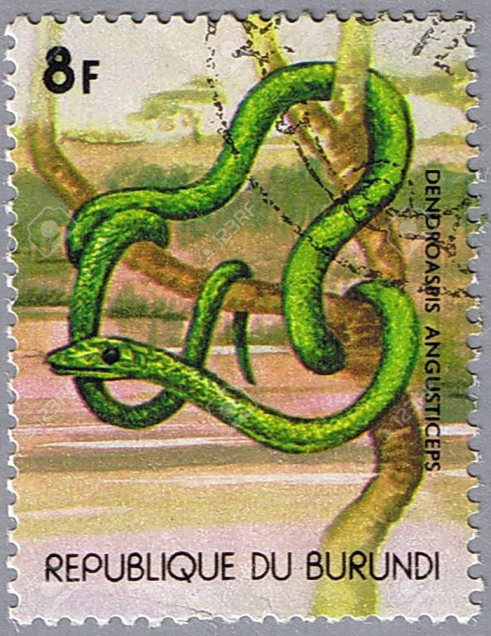 REPUBLIC OF BURUNDI - CIRCA 1977: A stamp printed in Republic of Burundi shows green mamba, series, circa 1977 Stock Photo - 7953440