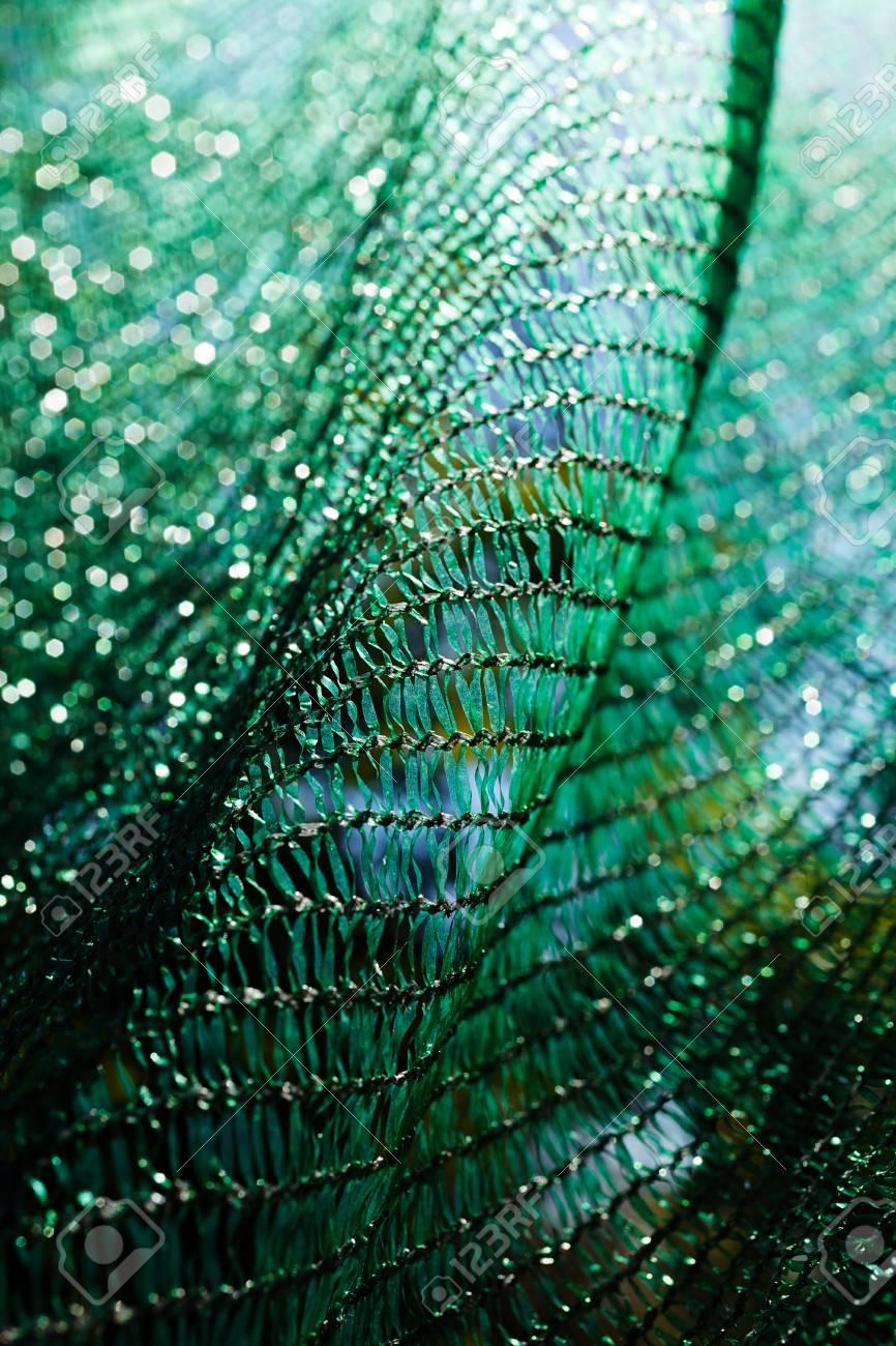 Rete In Plastica Per Cantiere.Immagini Stock La Rete Di Sicurezza Di Plastica Verde Spessa Per