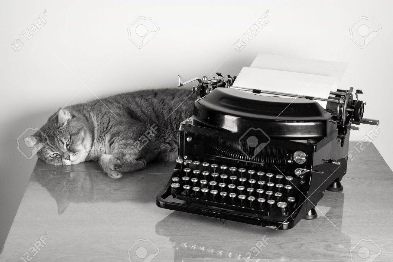 British sorthair cat and vintage old typewriter on table desaturated photo Stock Photo - 17627802