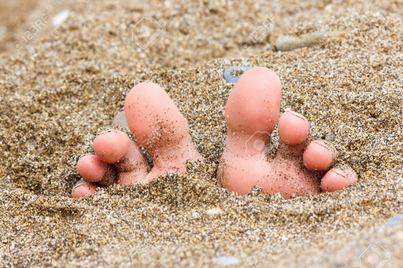 toes buried in the sand of the sea on the beach, foot on the sand, summer theme - 43448188