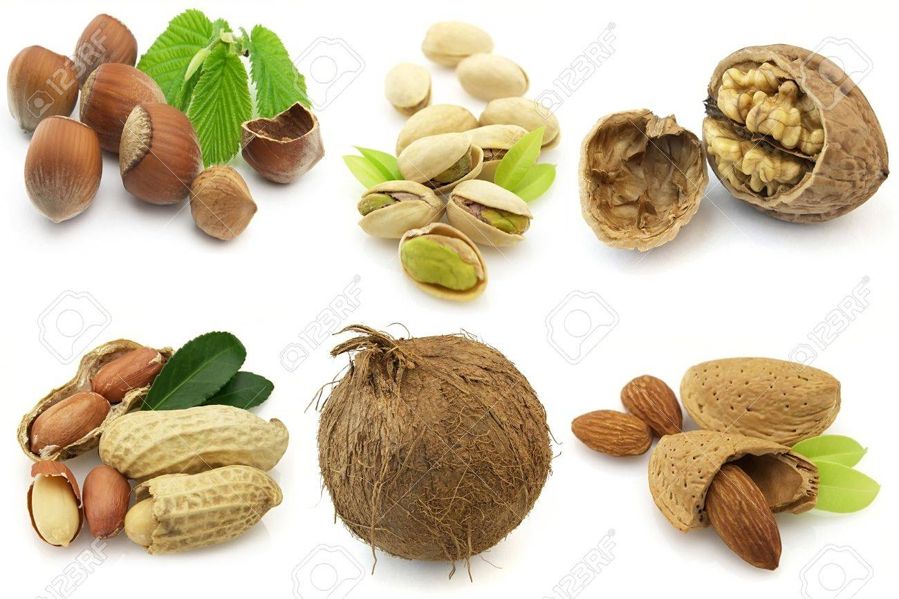 various isolated nuts with realistic drop shadows for depth on white background Stock Photo - 7691489