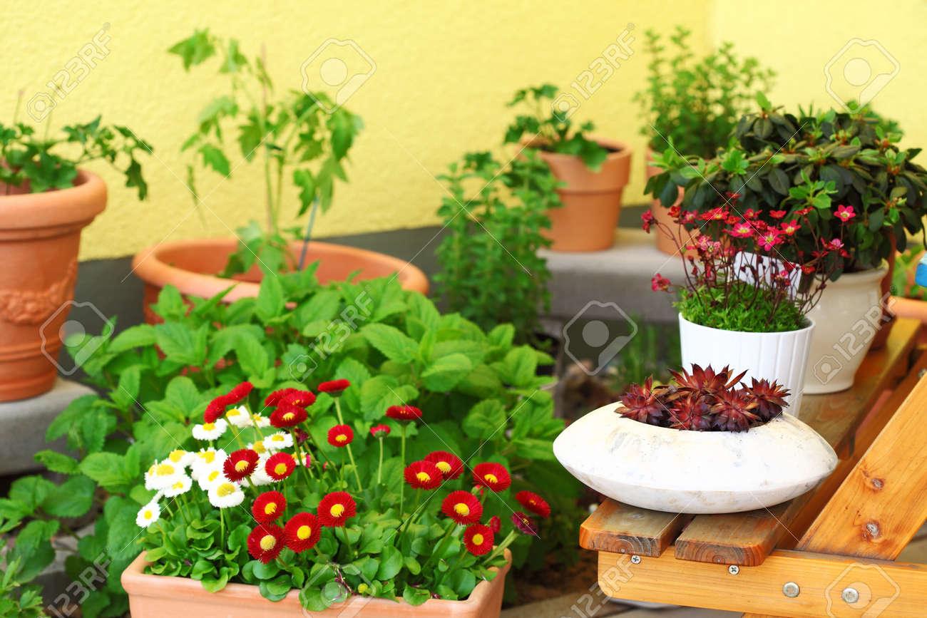 Terraza De Flores