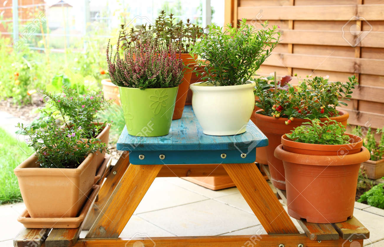 Outdoor flower pots for small garden  patio or terrace Stock Photo    10283794. Outdoor Flower Pots For Small Garden  Patio Or Terrace Stock Photo