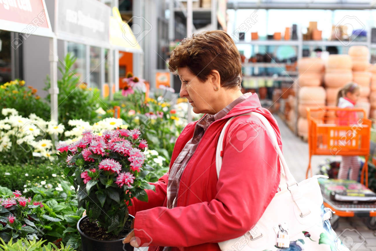 Senior woman looking for plants in flower shop Stock Photo - 14331784