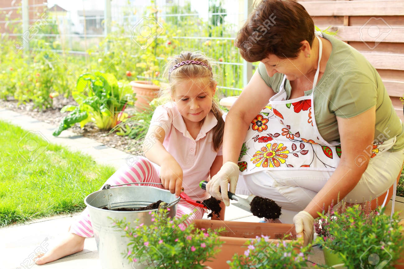 Elderly woman and child replanting flowers for better growth Stock Photo - 14331783