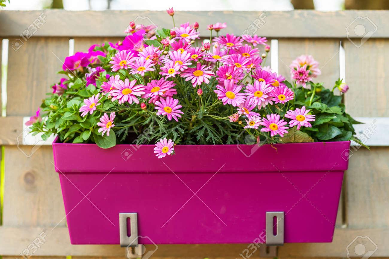 Pot De Fleur Sur La Cloture Exterieure Suspendue En Bois Pour Petit Jardin Patio Ou Une Terrasse
