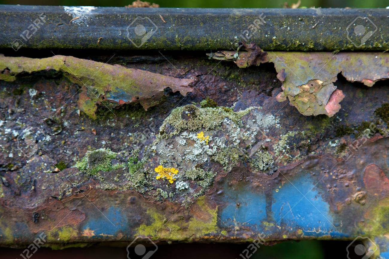 Detail of rusty surface with moss Stock Photo - 5290234