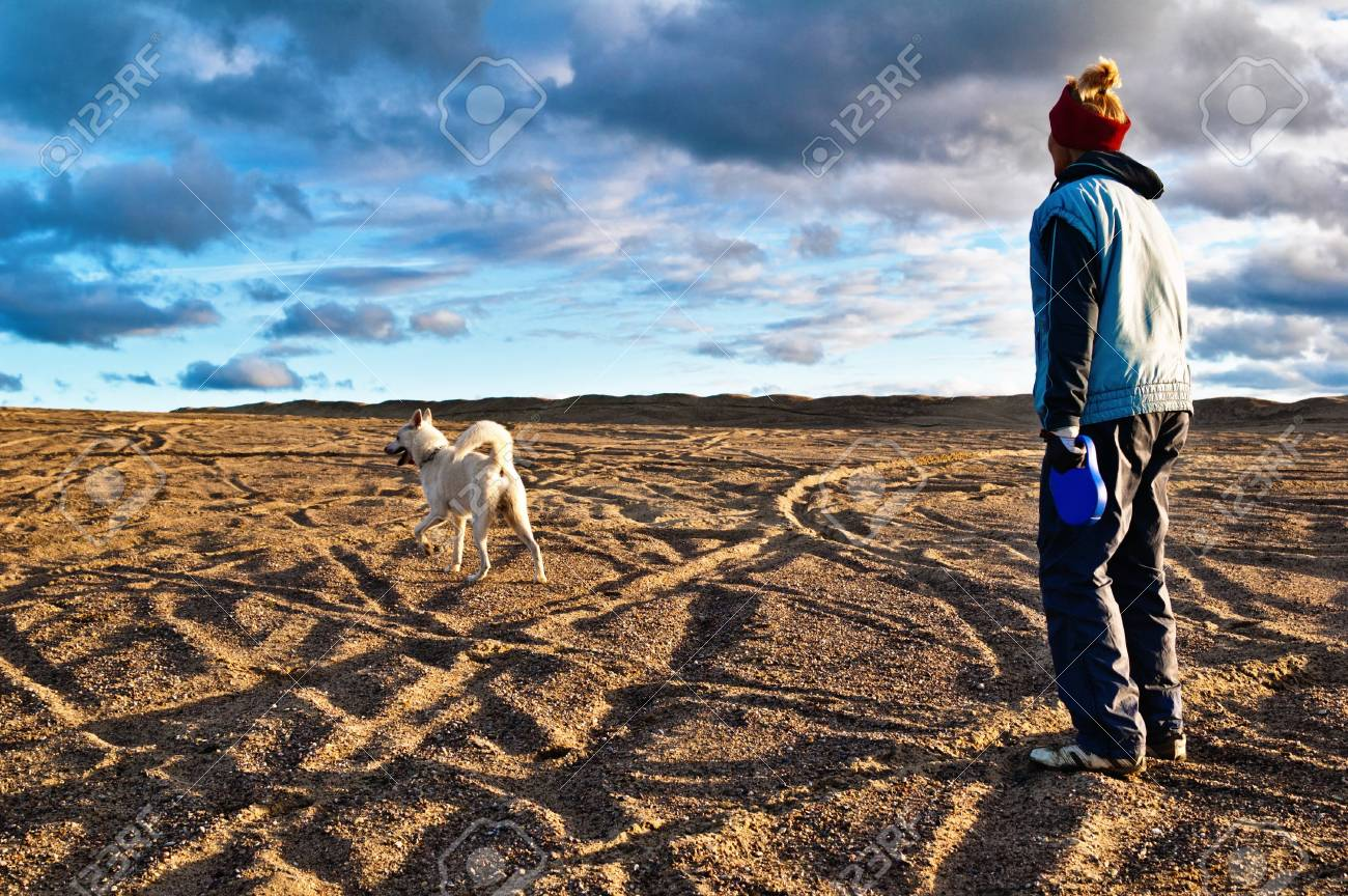 The woman plays with a dog in the fall on the nature Stock Photo - 8103823