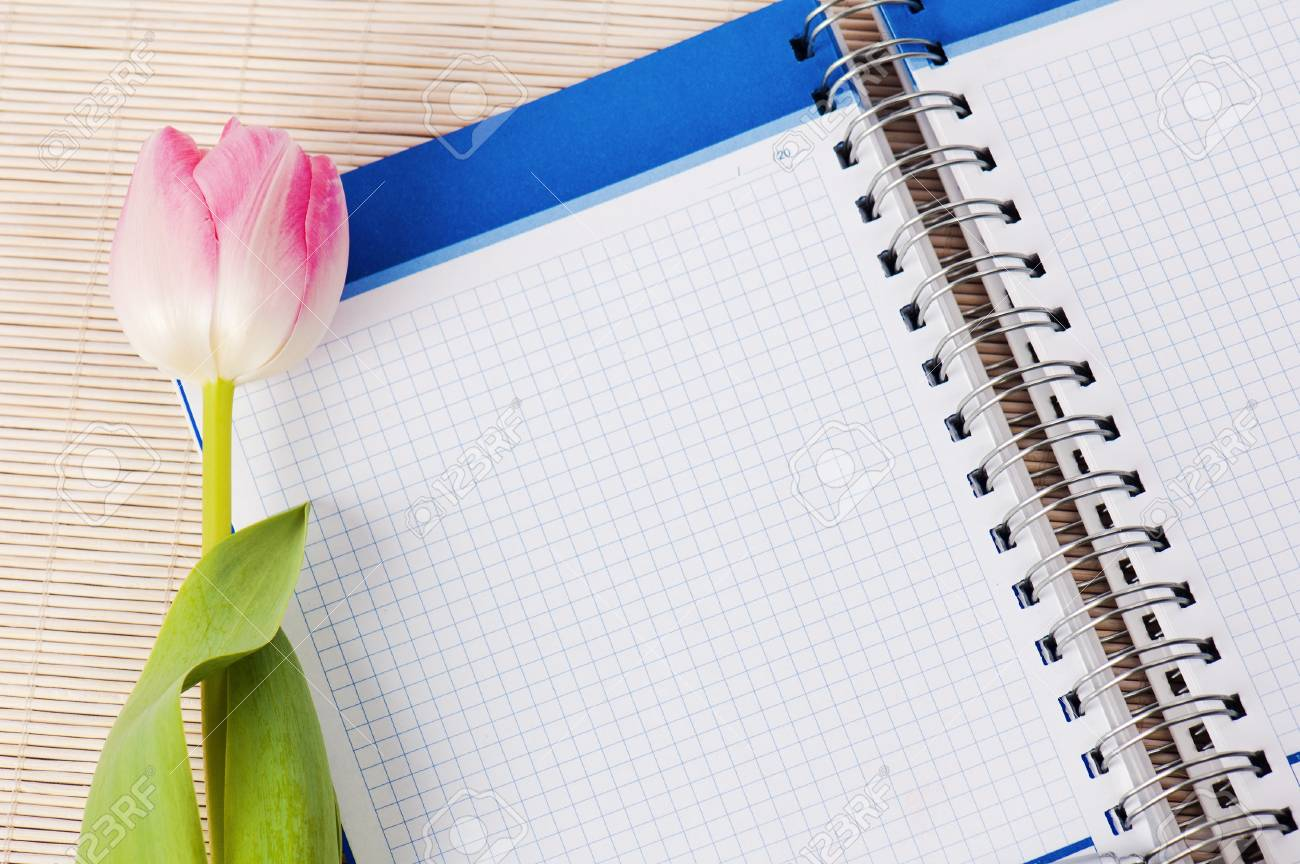 Open notebook and tulip Stock Photo - 8632240