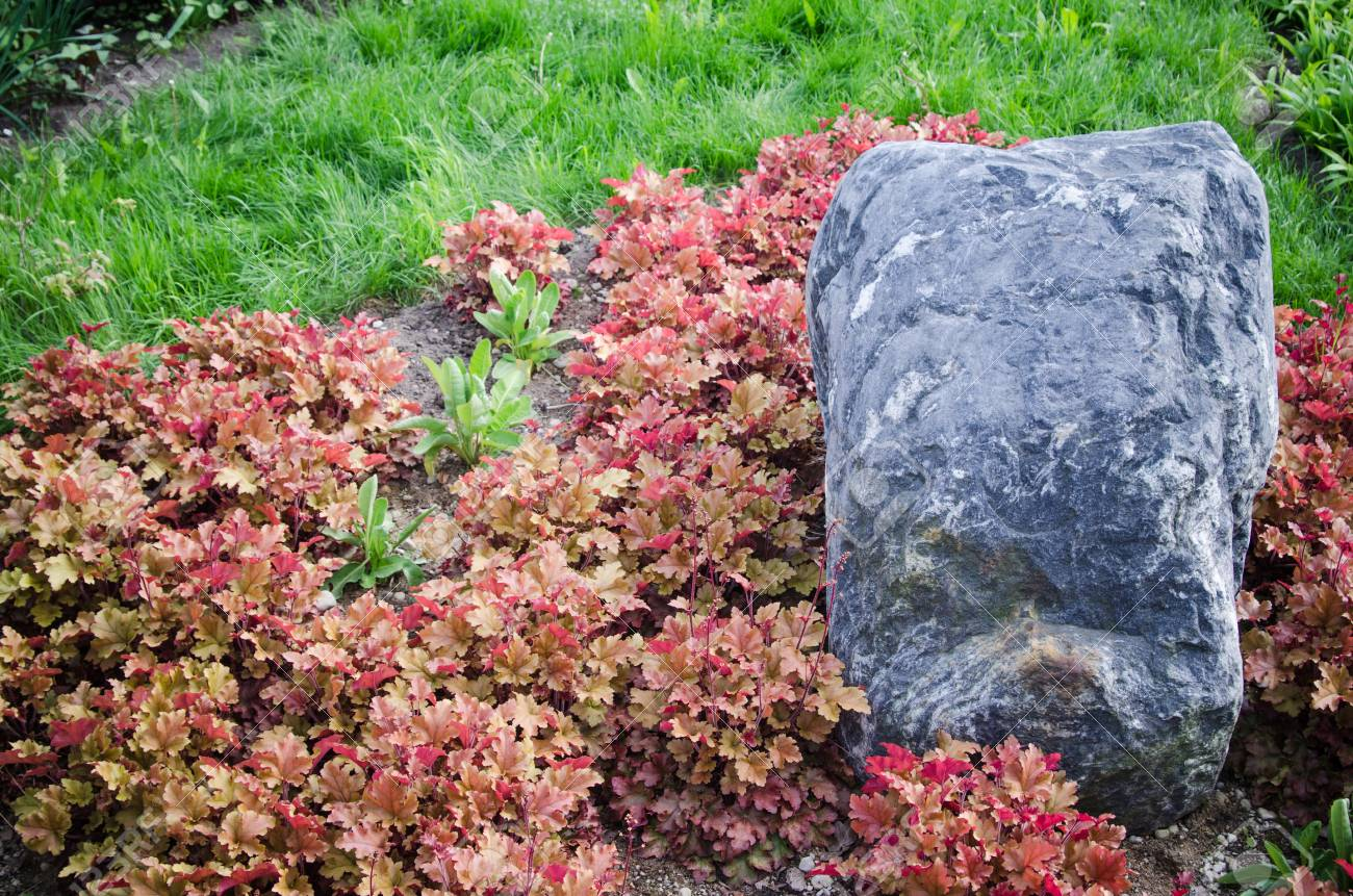 Decorative Flower Bed In A Garden With Rocks And Plants, Close Up Stock  Photo