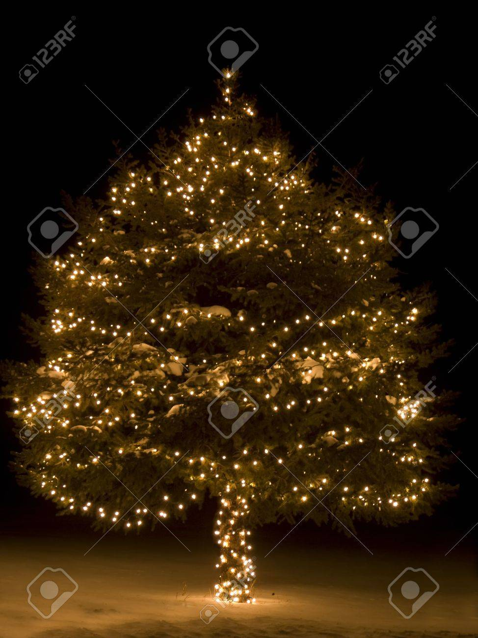 Lit Up Christmas Tree Outside In The Snow Stock Photo, Picture And ...