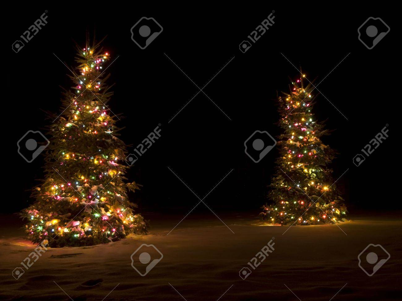 lit up christmas tree outside in the snow stock photo 2226517