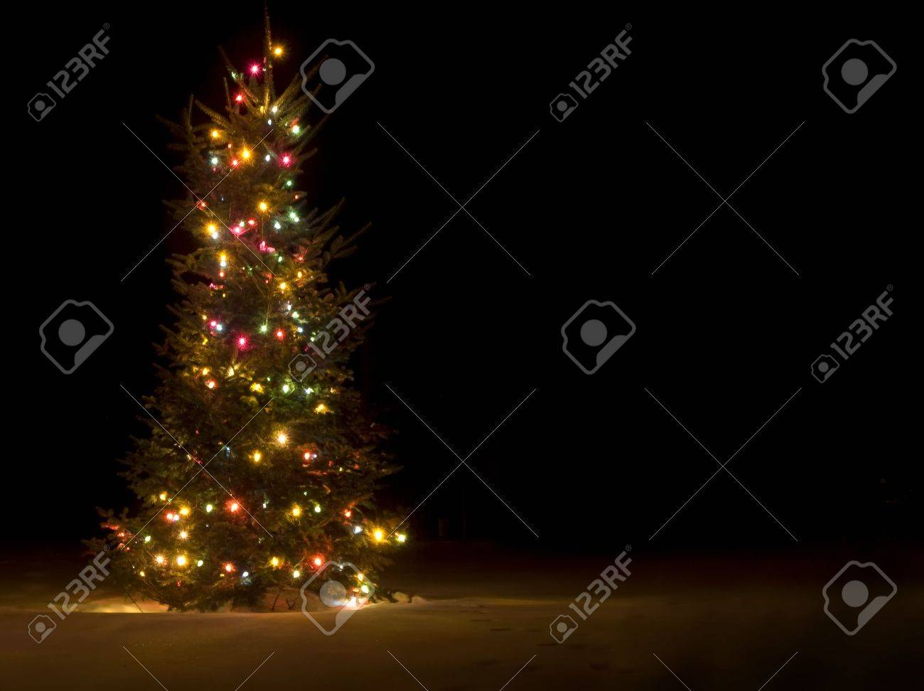 Outside Christmas Tree Lit Up At Night In The Snow Stock Photo Picture And Royalty Free Image Image 2309688