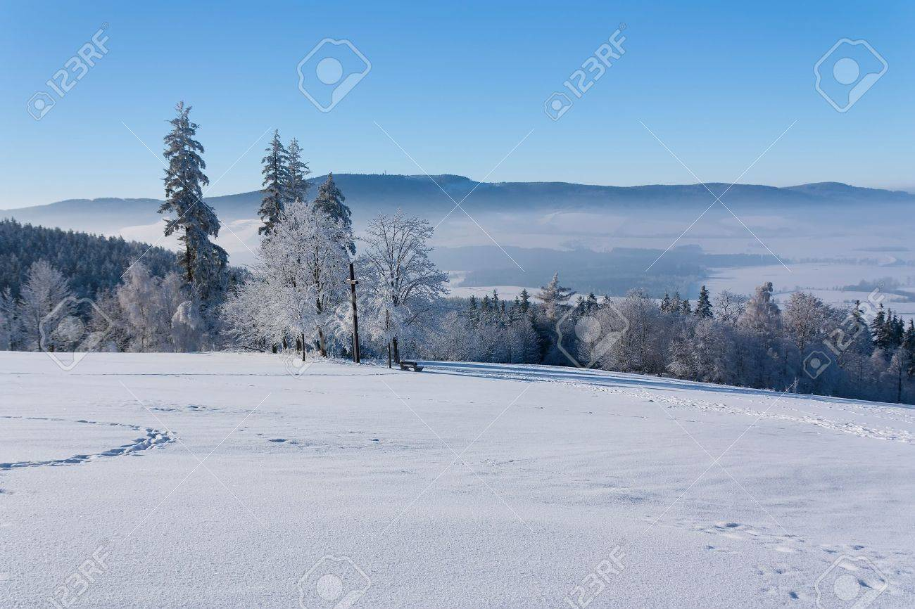 View of Eagle Mountain (Orlicke hory, Czech Republic) with trees and a cross in the foreground - 8542633