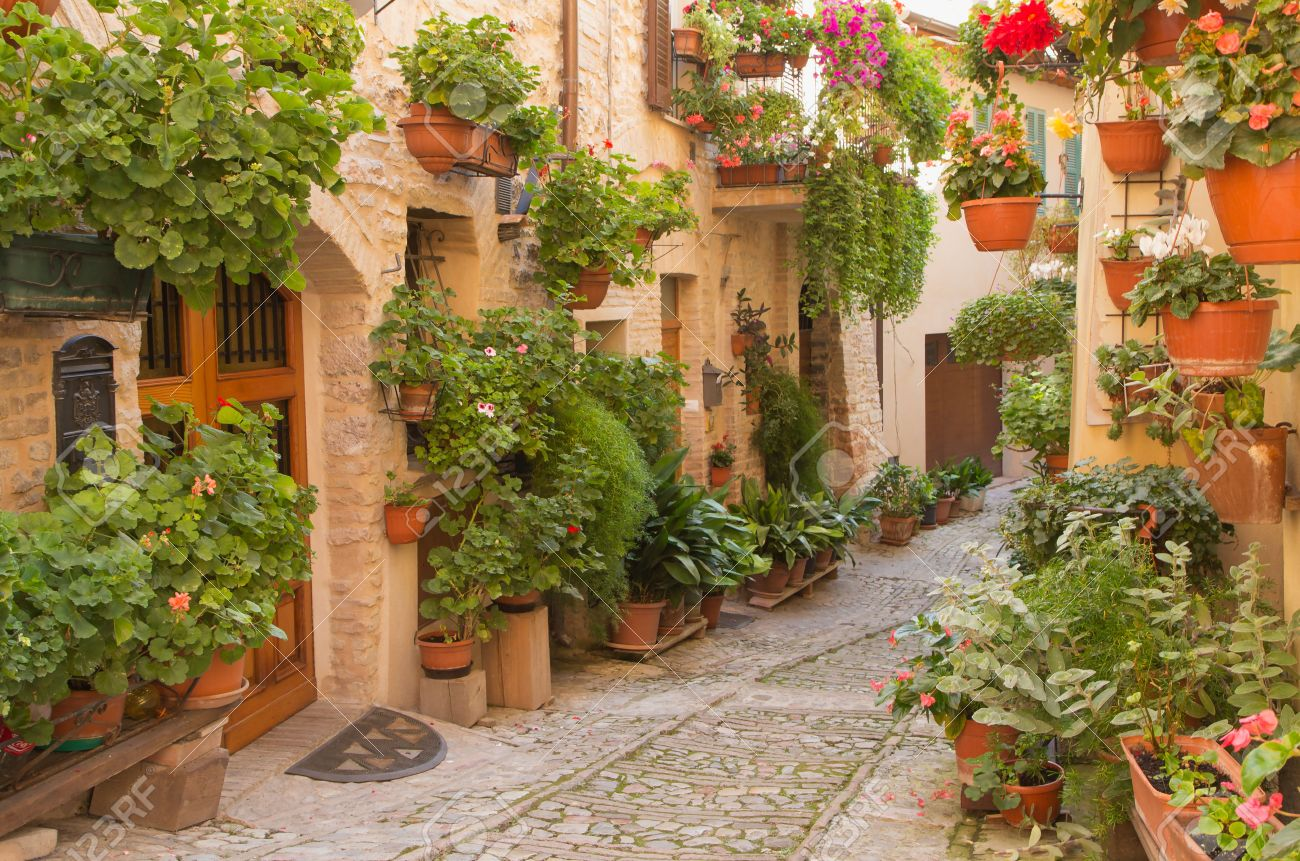 Street decorated with plants and flowers in the historic Italian city. (Spello, Umbria, Italy.) Horizontally. - 32646059
