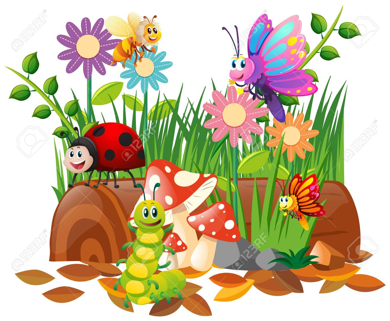 Different types of insects in garden illustration