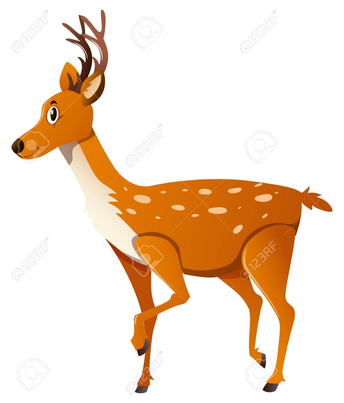 野生の鹿を横向きイラストに立っていますのイラスト素材ベクタ