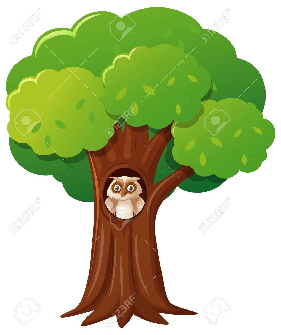 中空の木イラストのフクロウのイラスト素材ベクタ Image 80309623