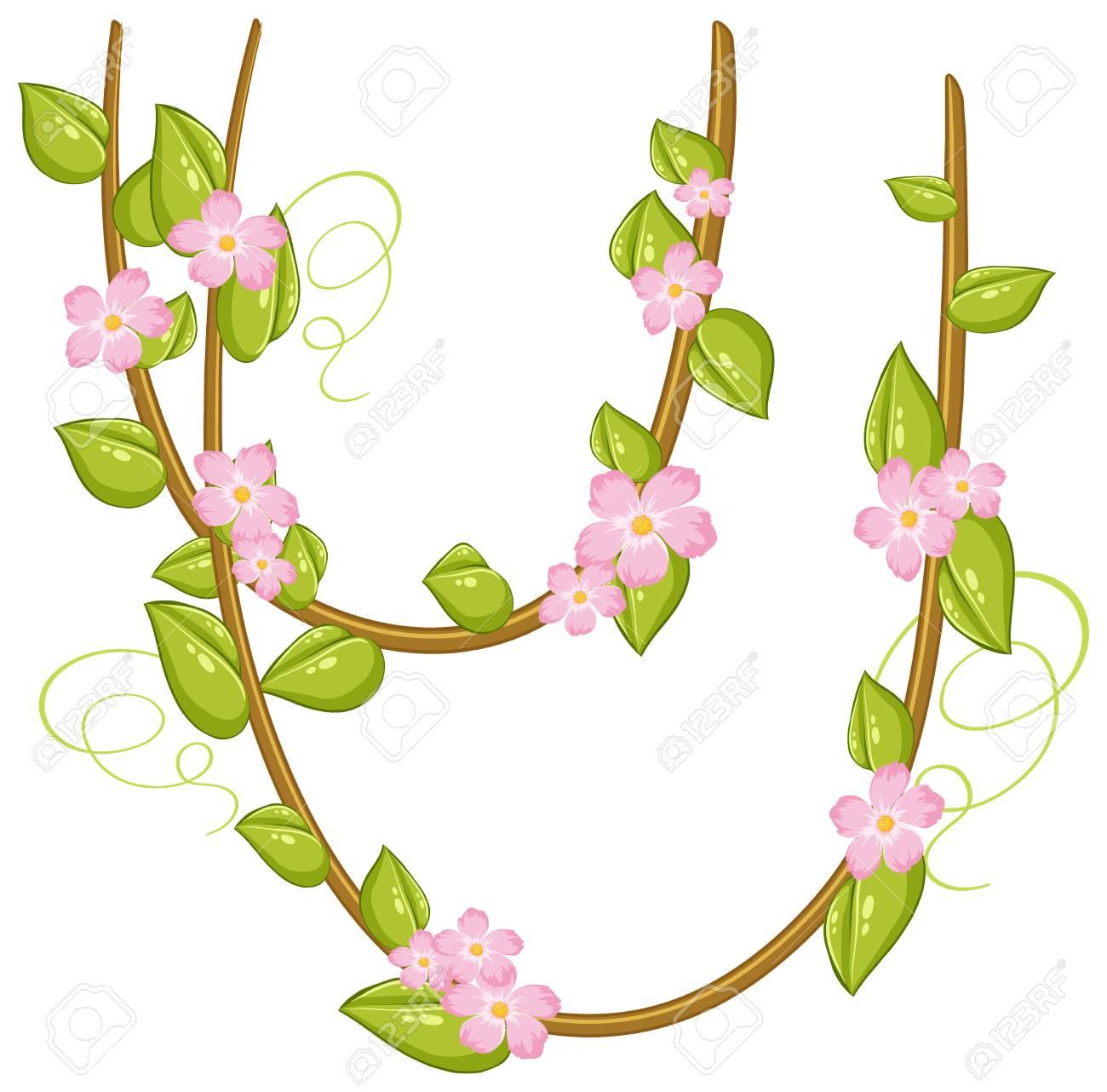 Pink flowers on vines illustration royalty free cliparts vectors pink flowers on vines illustration stock vector 97011920 mightylinksfo