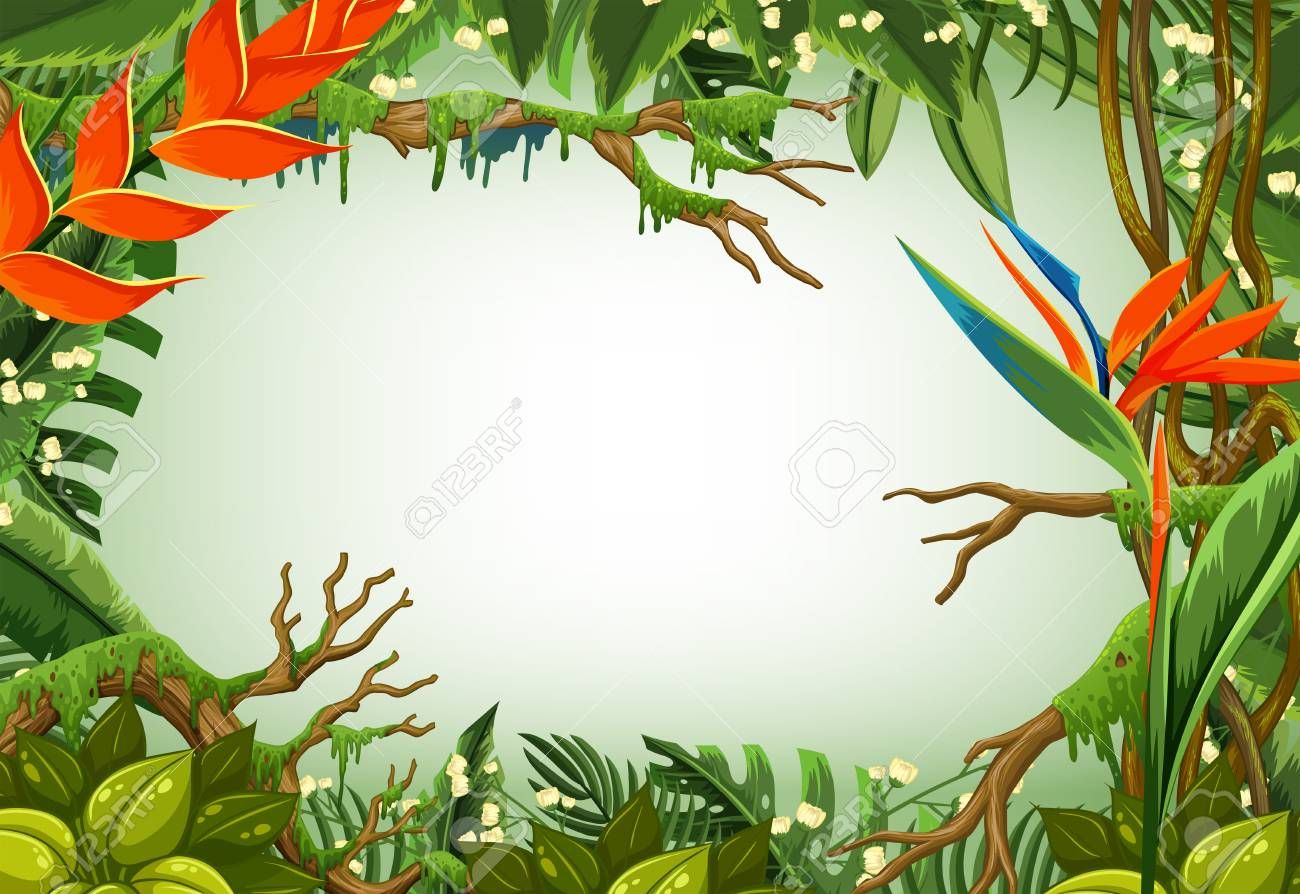Border Template With Trees In The Forest Illustration Royalty Free ...