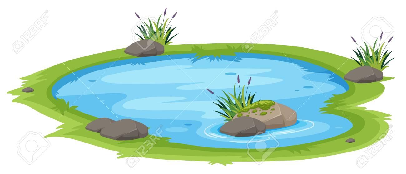 A natural pond on white background illustration - 111578613