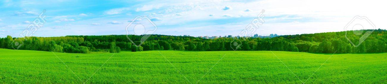 Panorama of Feild and City in the Middle of the Forest. Beautiful Green Ecological Concept. - 15787640