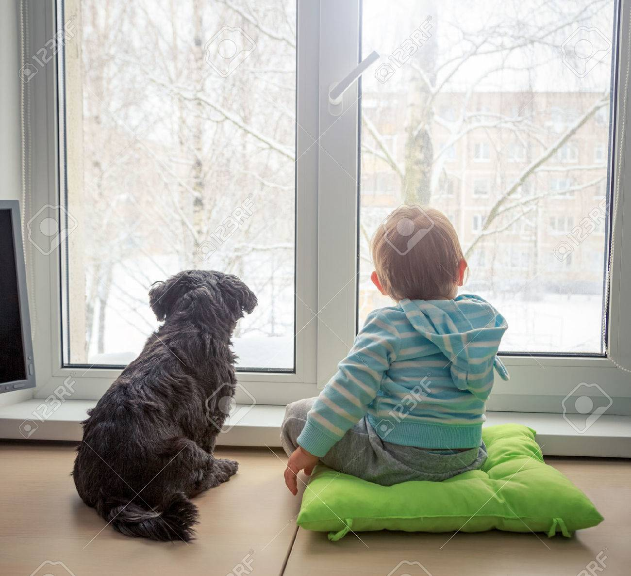 64434542-baby-with-dog-looking-through-a-window-in-winter-rear-view-boy-and-pet-friends-concept-toned-photo-w - Lasting friendships start early - Inspiration & Hope