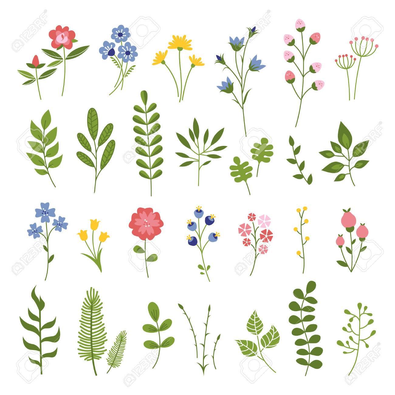 Floral Dibujado Mano Del Vector. Colección Flores Y Hojas. Flor De ...