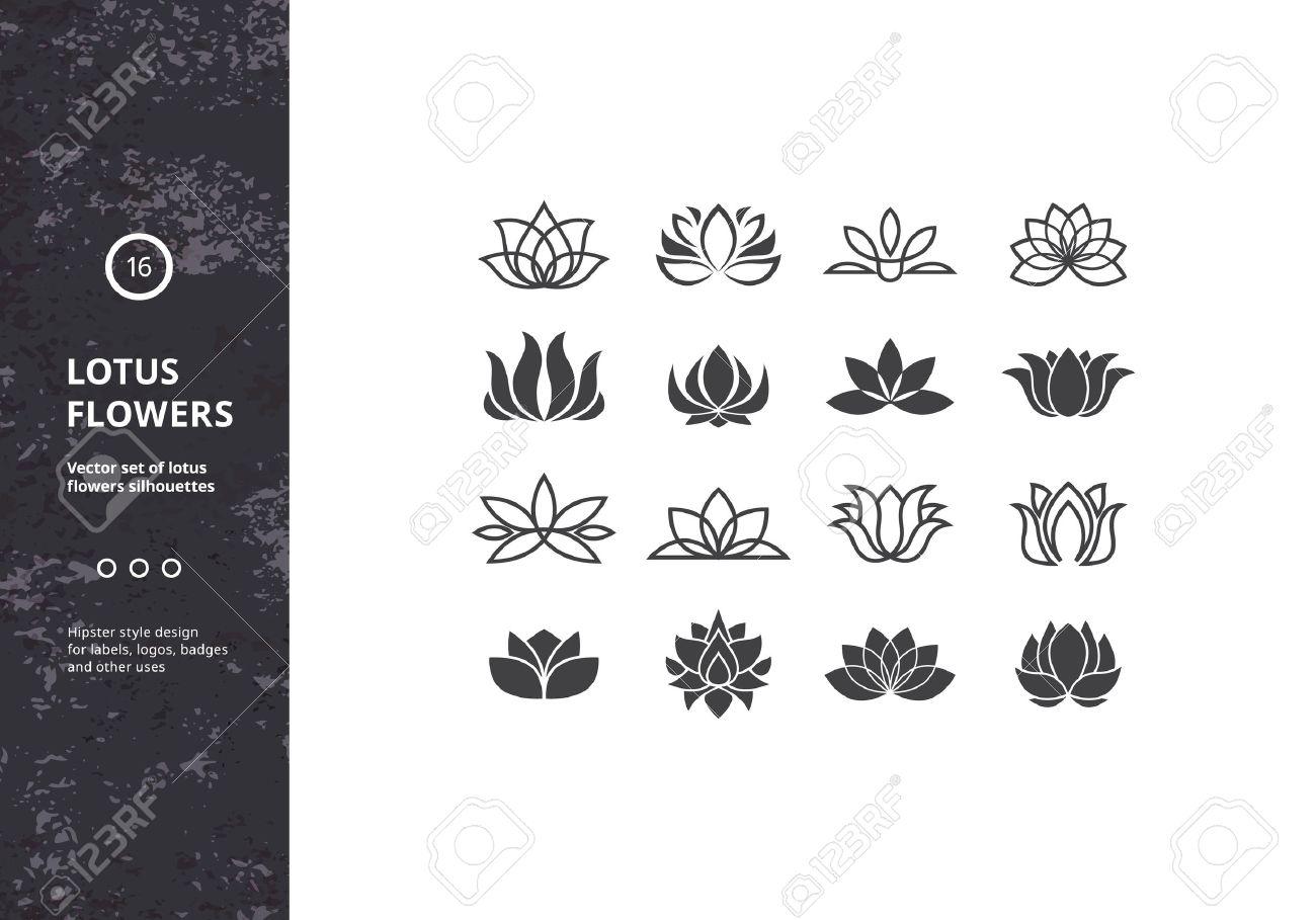 Iconos Flor De Loto Conjunto De Plantilla De Lirio De Agua Formas