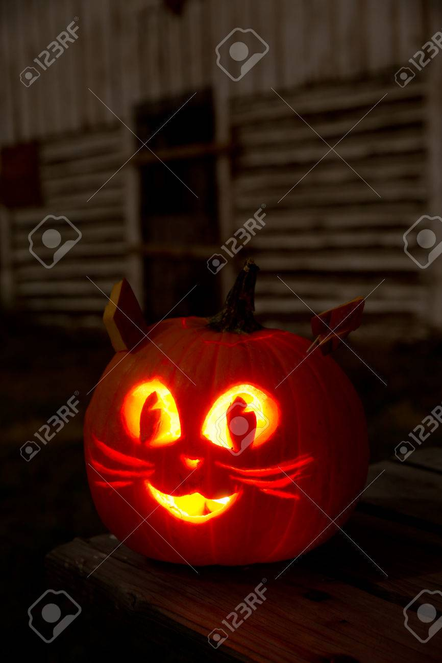 Kitty Cat Jack O Lantern On A Picnic Table With Barn Stock Photo Picture And Royalty Free Image Image 23193561