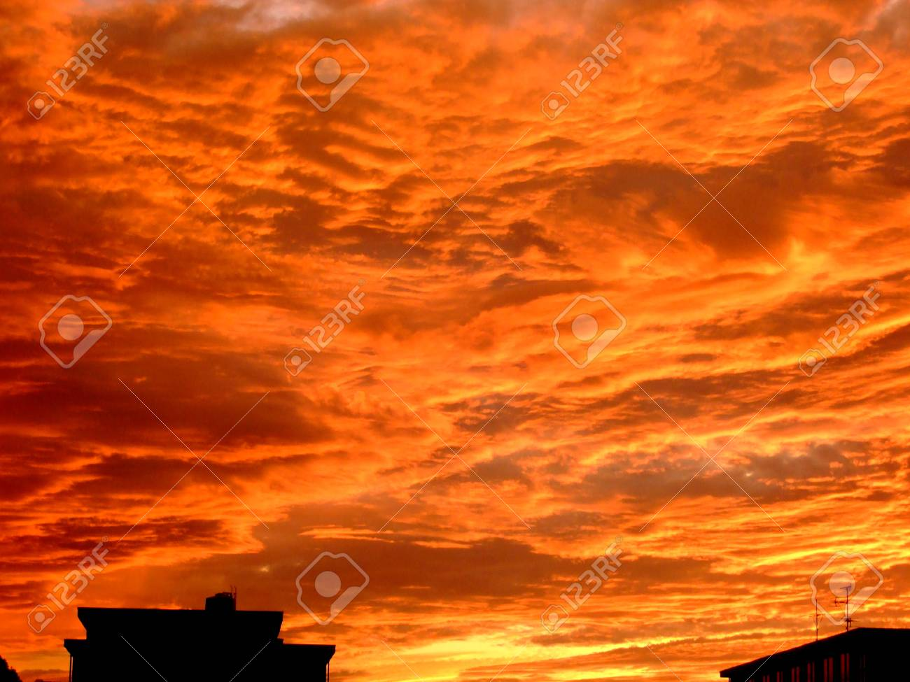 Red Sky - 37000380