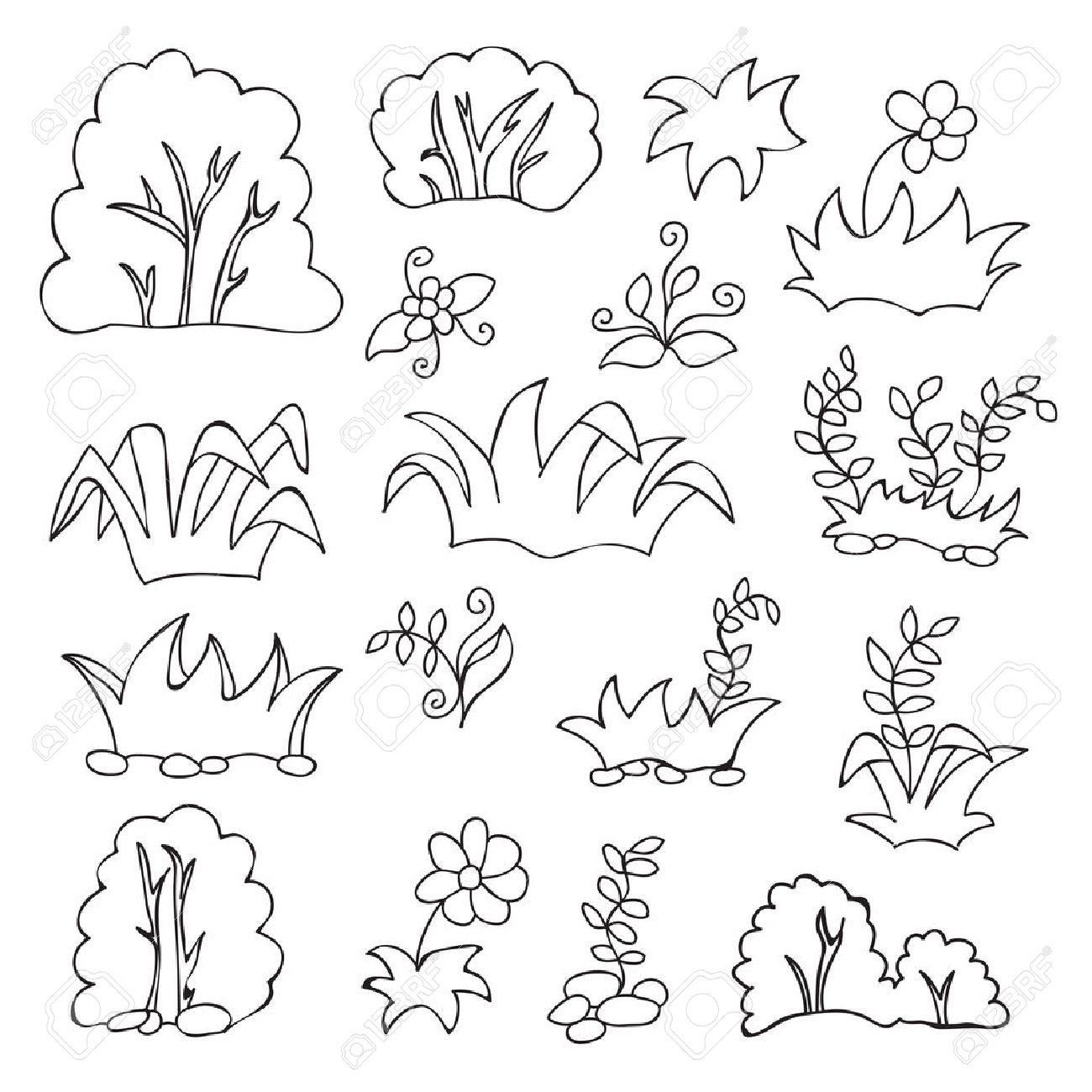 Libro Para Colorear Para Los Niños - La Hierba Y Flores Conjunto De ...