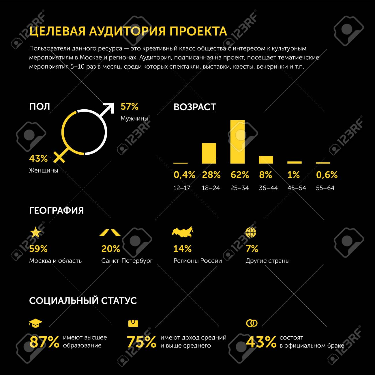 Targeted audience of online project  Infographics  In Russian