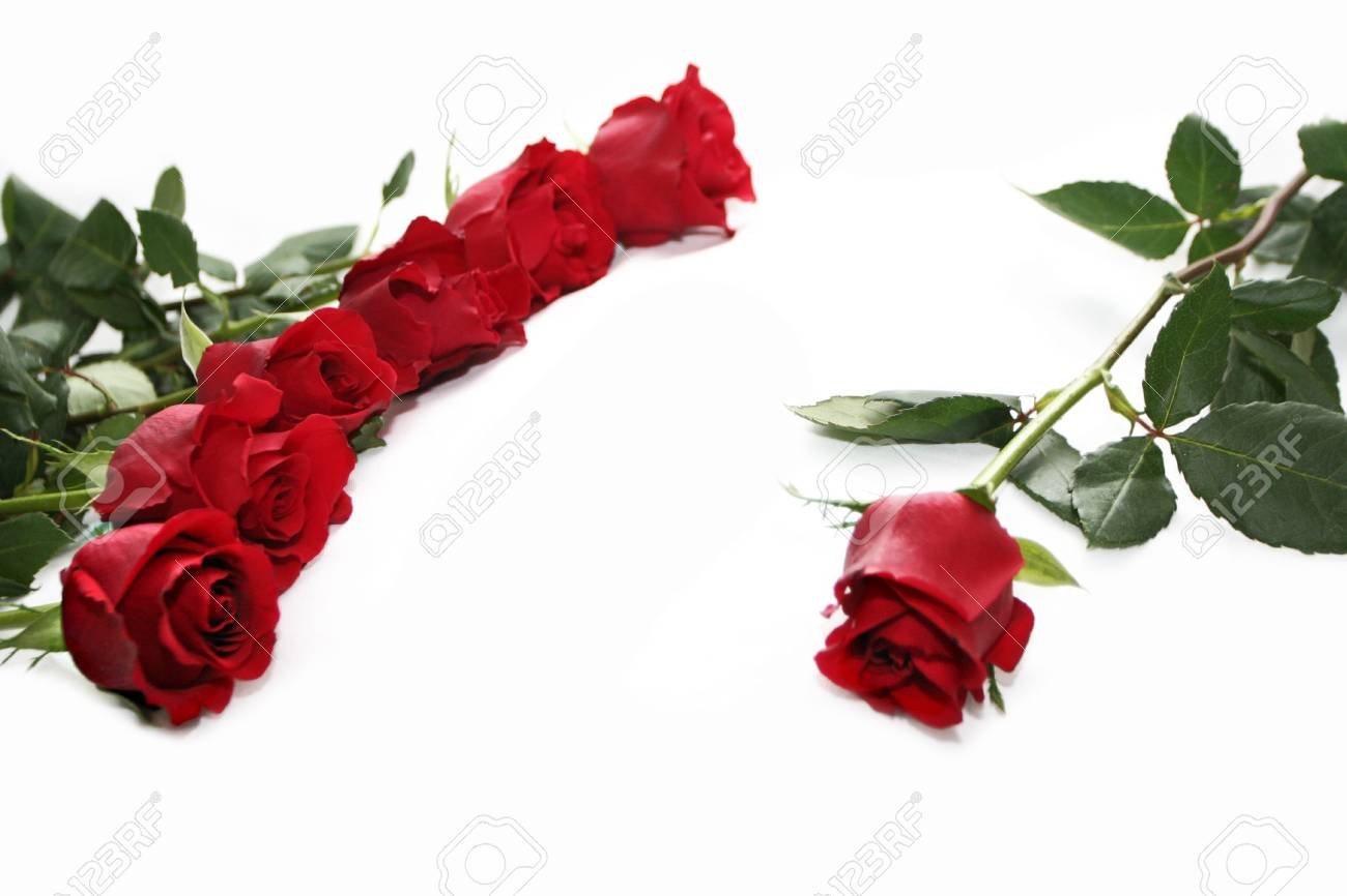 red roses decoration Stock Photo - 697342