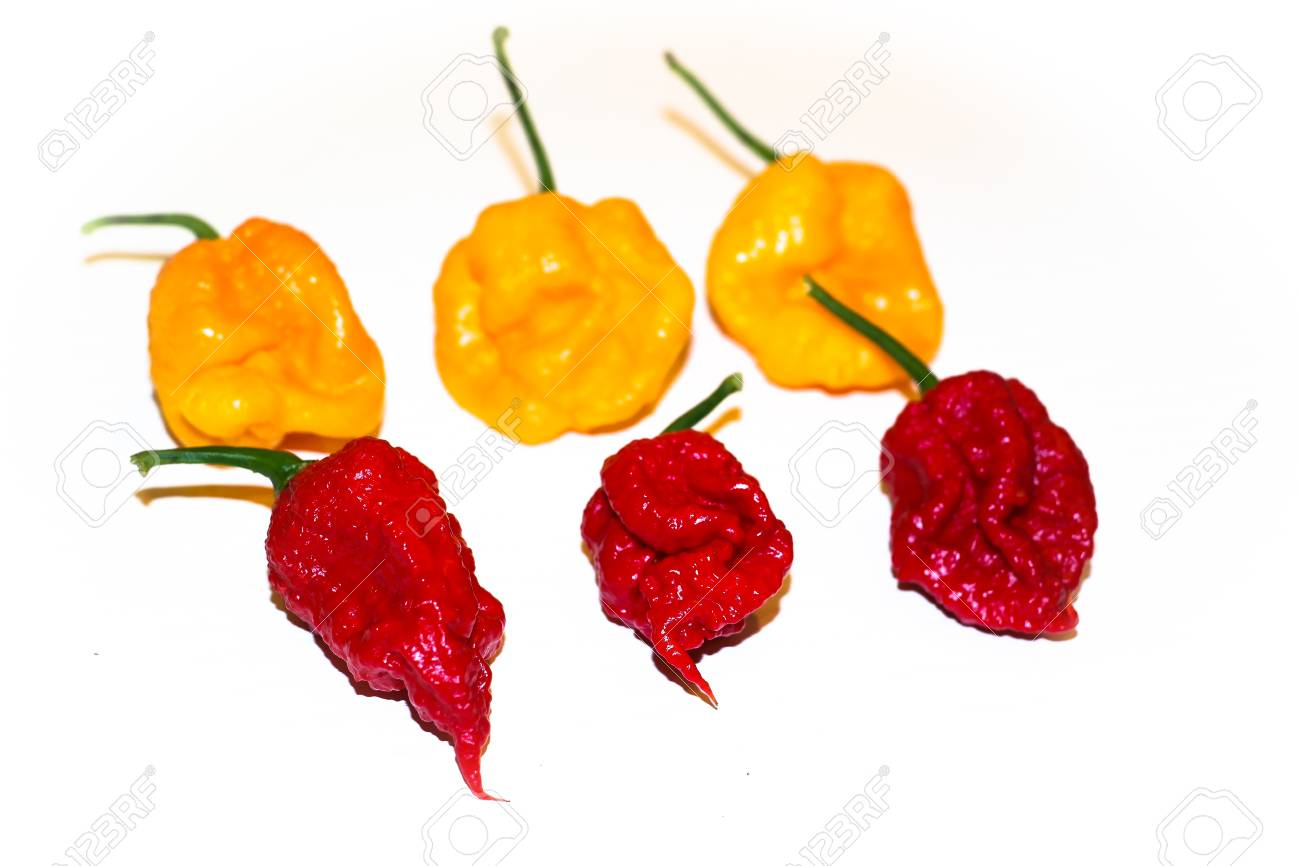 Mix of hot peppers  Carolina reaper red and Trinidad scorpion