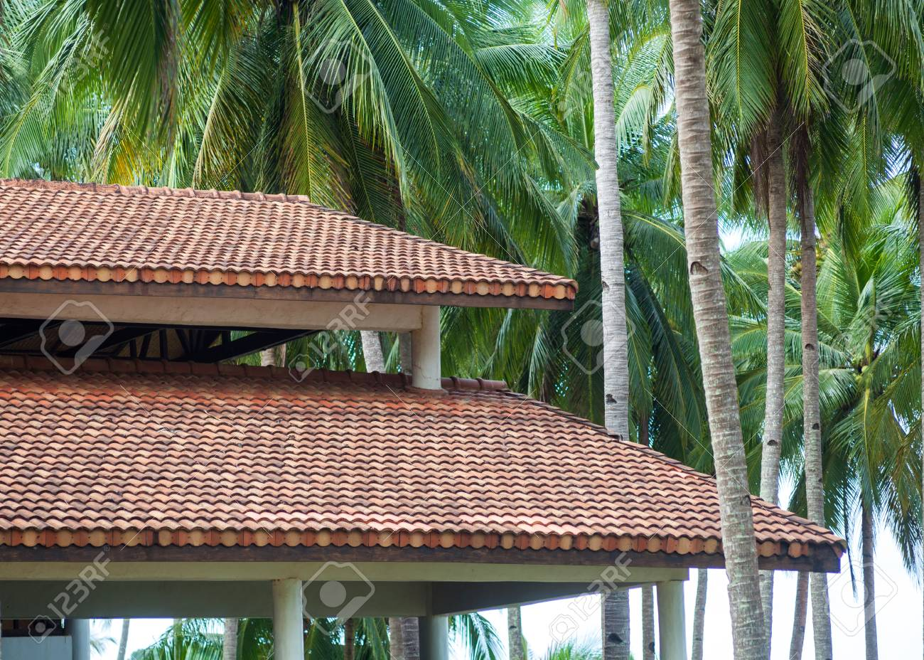 Banque dimages modern wooden house with red clay tile roof against the background of palm trees roofing construction building attic house construction