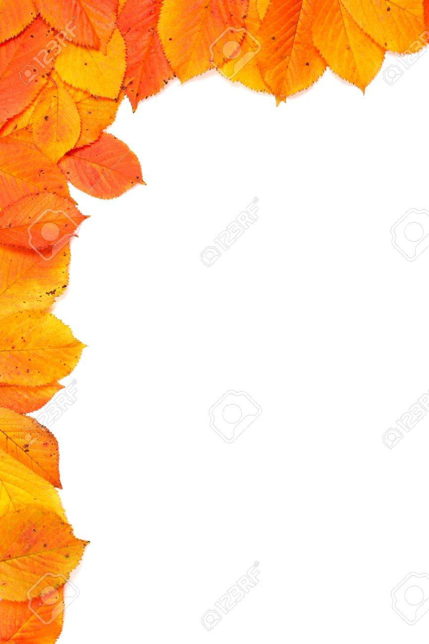 Colorful autumn corner made from leaves on white background Stock Photo - 2037252