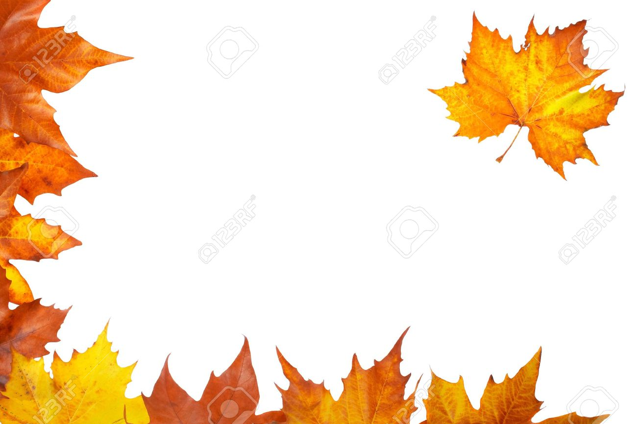 Colorful autumn corner made from leaves, isolated on white background Stock Photo - 2067323