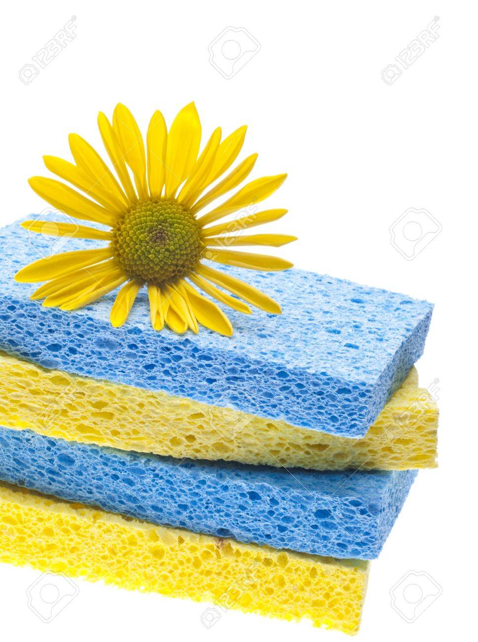 Natural Spring Cleaning Concept with Sponges and Daisy. Stock Photo - 8896287