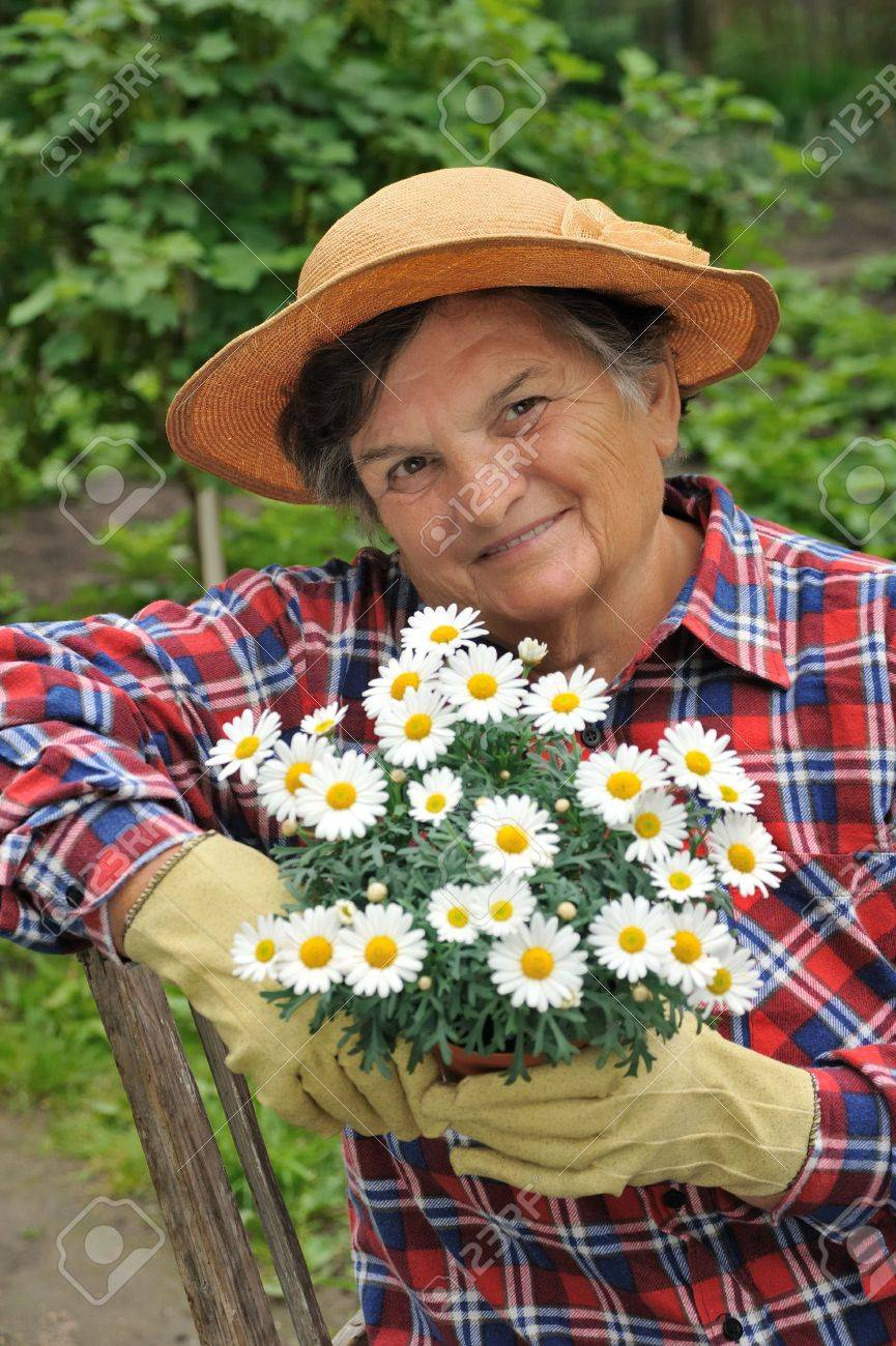 Senior woman gardening Stock Photo - 5994627