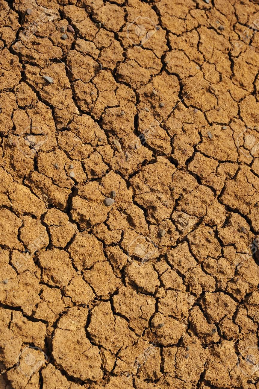 Cracked dry ground texture Stock Photo - 7399026