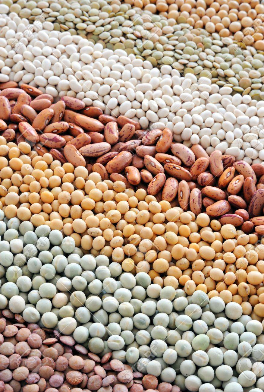 Mixture of dried lentils, peas, soybeans, beans  - background Stock Photo - 8438154