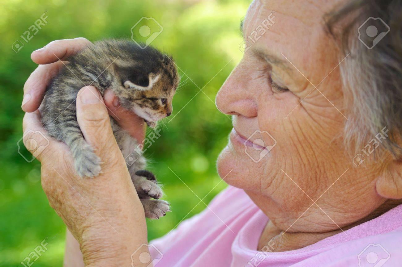 Senior woman holding kitten Stock Photo - 8725950